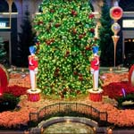 Bellagio's Christmas Botanical Gardens Displays