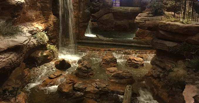 Bass Pro Shop Wildlife Habitat