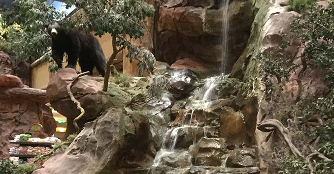 Bass Pro Shop Bear