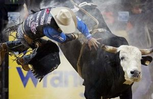 Bull riding at the PBR Finals in Las Vegas