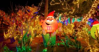 Ethel Ms Cactus Garden Holiday Light Display
