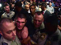 Fake UFC Fight