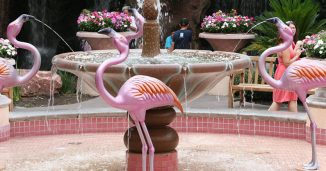 The Flamingo Wildlife Habitat