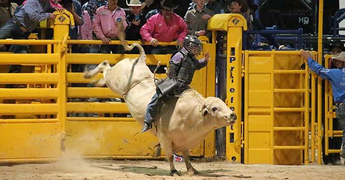 Nfr Calendar.Junior Nfr The Junion National Finals Rodeo In Las Vegas