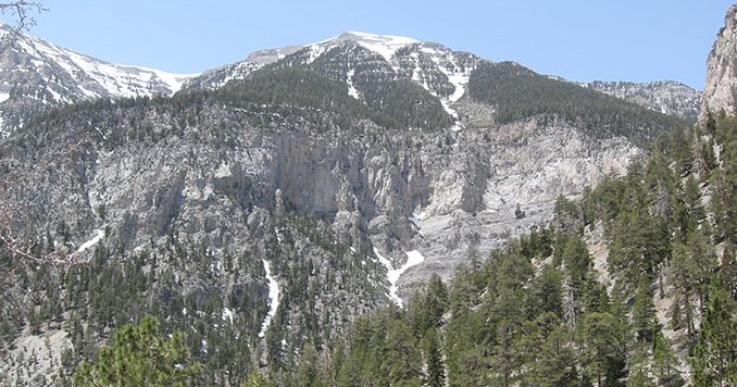 Mt. Charleston in Nevada