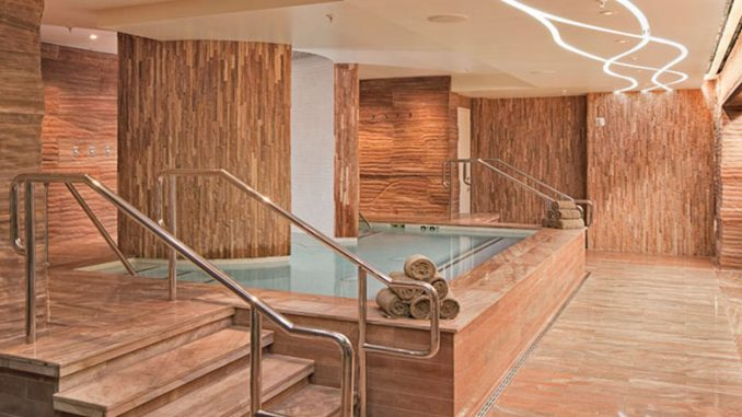Spa Hot Tub